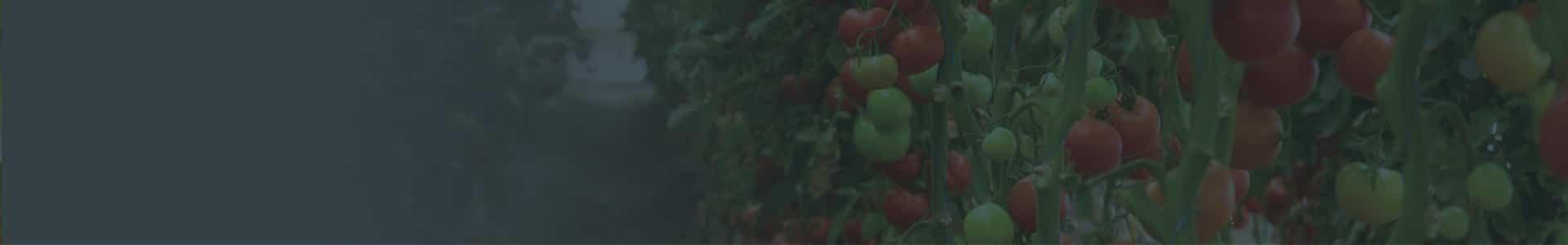 bandeau-agriculture